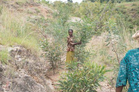 Ethiopia-2017-Ecosia (153 of 279)