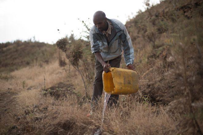 Ethiopia-2017-Ecosia (188 of 279)