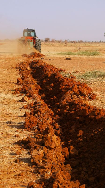 Soil is prepared for sowing _ Der Boden ist bereit fuer die Aussaat Credit WeForest_preview