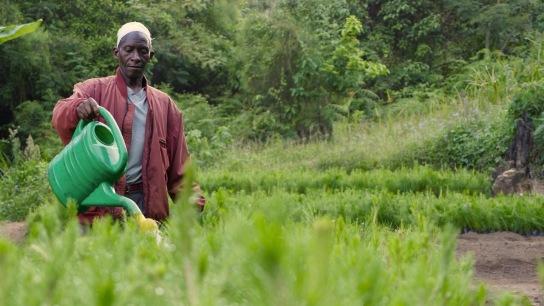 Tanzania - Friends of the Usambara Society 2